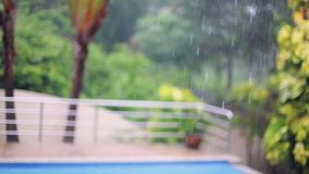 Tropical rain drops falling on the palm leaves on swimming pool blurred background in Koh Samui, Thailand. 1920x1080 stock video
