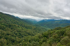 Tropical rain-forest in asia. Rain is coming Stock Images