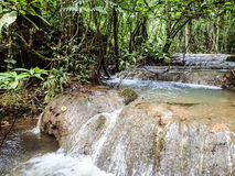 Tropical rain forest cascading waterfall Stock Photography