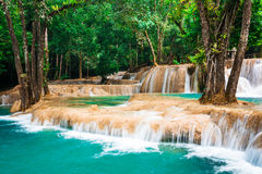 Tropical rain forest jangles with Kuang Si waterfall. Laos Royalty Free Stock Image