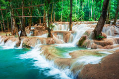 Tropical rain forest with Kuang Si cascade waterfall. Luang Prabang, Laos Royalty Free Stock Photo