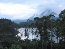 Tropical rain forest and lake in the back ground of cloudy mountain Stock Images