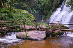Tropical rain forest landscape with jungle plants, flowing water of Pha Dok Xu waterfall and bamboo bridge. Mae Klang Luang villag Stock Image
