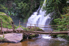 Tropical rain forest landscape with jungle plants, flowing water of Pha Dok Xu waterfall and bamboo bridge. Mae Klang Luang villag Stock Photography