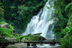Tropical rain forest landscape with Pha Dok Xu waterfall and bamboo bridge. Thailand. Tropical rain forest landscape with jungle plants, flowing water of Pha Dok Royalty Free Stock Photography