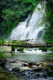 Tropical rain forest landscape with Pha Dok Xu waterfall. Thailand Royalty Free Stock Image