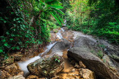 Tropical rain forest landscape with small waterfall. Thailand Royalty Free Stock Photo