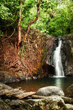 Tropical rain forest landscape with waterfall Royalty Free Stock Photos