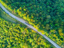 A tropical rain forest and a rural road in Thailand Stock Photography