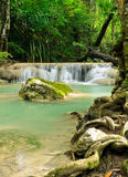 Tropical rain forest waterfall Royalty Free Stock Image