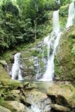 Tropical Rain Forest Waterfall Stock Image
