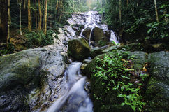 Tropical rain forest waterfall with surrounded by lush foliage and green mossy rock. Beautiful morning at tropical rain forest waterfall with surrounded by lush Royalty Free Stock Photography