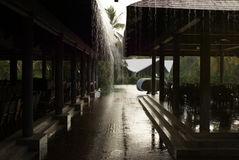 Tropical rain in hotel Stock Photography