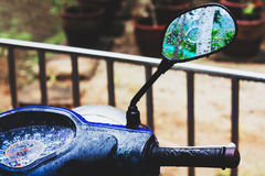 Tropical rain. Mirror of motorbike. Stock Photography