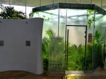 Tropical rain - steam bath Royalty Free Stock Images