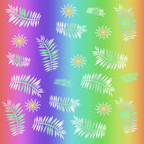 Tropical rainbow Stock Photo