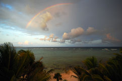 Tropical rainbow Stock Photos