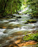 Tropical rainforest landscape with flowing river. Thailand Royalty Free Stock Photos