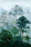 Tropical rainforest Royalty Free Stock Photos