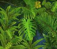 Tropical rainforest oil painting background Royalty Free Stock Photography