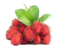 Tropical Rambutan Fruits. Red Rambutan Fruits with leaf on white back ground Stock Photo