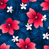 Tropical red hibiscus flowers in a seamless pattern Royalty Free Stock Photo