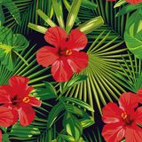 Tropical red hibiscus green palm leaves seamless pattern royalty free illustration