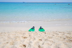 Tropical Red Sea In Egypt Royalty Free Stock Photos