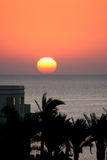 Tropical red sea sunset Royalty Free Stock Image