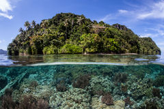 Tropical Reef and Island. A diverse and healthy coral reef grows near a remote tropical island in Raja Ampat, Indonesia. This beautiful region is known to harbor Stock Images