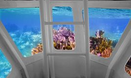 Tropical reef view from underwater submarine Royalty Free Stock Photography