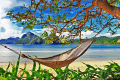 Tropical relax. Ing holidays, scene with hammock Royalty Free Stock Photography