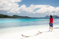 Tropical relax Stock Photography