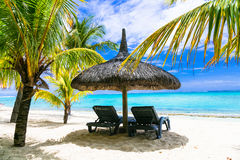 Tropical relaxing vacation. white sandy beaches of Mauritius isa Stock Photos