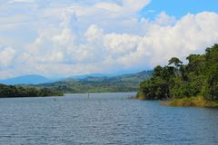Tropical Reservoir. An tropical forest on the banks of a full reservoir in the Venezuelan state of Barinas Royalty Free Stock Images
