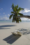 Tropical resort. Cote de Or beach, Praslin, Seychelles royalty free stock image