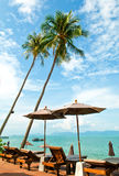 Tropical Resort. Palm trees, ocean and a view at a luxury resort in Thailand Royalty Free Stock Image