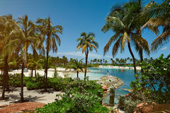 Tropical resort bay. With palms in clear blue sky day. Vacation on bahamas nassau atlantis hotel royalty free stock photos