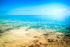 Tropical resort beach. Summer background Stock Images