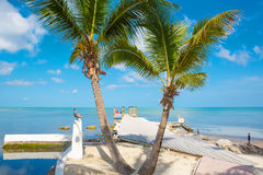 Tropical resort with chaise longs and hammocks. Near palms on sandy beach, Key West, Florida, USA stock photos