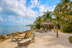 Tropical resort with chaise longs and hammocks Stock Images