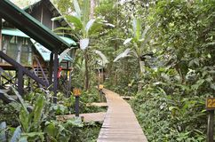 Tropical resort in Costa Rica. Tropical resort in the rainforest in Costa Rica Stock Image