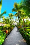 Tropical resort Stock Images