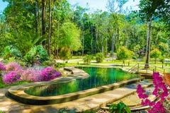 Tropical resort in Krabi region, Thailand. Beautiful landscape of hot streams in Krabi region of Thailand, in summer season royalty free stock photos