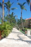 Tropical Resort Path Stock Photography