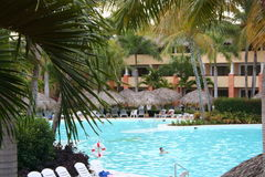 Tropical resort pool. With many coconut palm trees Royalty Free Stock Photos