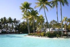 Tropical resort, Port Douglas, Queensland Stock Images