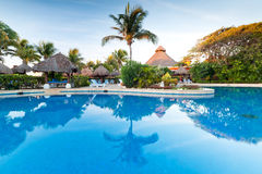Tropical resort with swimming pool. Tropical swimming pool at sunrise in Mexico Stock Photography