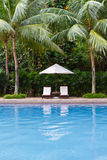 Tropical resort swimming pool. In Malaysia stock images