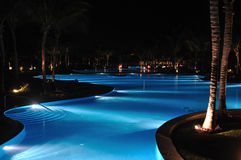 Tropical Resort Swimming Pool at Nighttime. With Palm Trees Royalty Free Stock Image